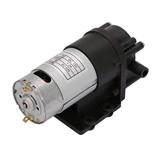 Garosa ZC-520 DC12V Wasserpumpe Korrosionsbeständige Heißwasserpumpe Konservierungsmittel Bürstenmotor Hochdruckwasserpumpe Zahnrad Selbstansaugende Pumpe für Sanitärartikel, Spray, Wasserspender
