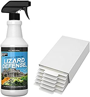 Best gecko glue traps Reviews