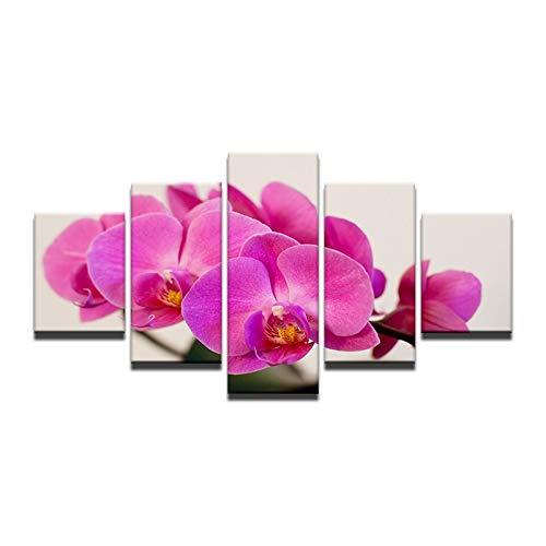 Gbwzz 5 stuks schilderijen op canvas 5 stuks modern schilderij purper orchidee decoratie thuis canvasfoto bloempot afbeeldingen voor de woonkamer modulaire afbeeldingen Frame 40x60 40x80 40x100cm
