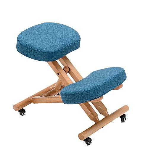 qddan Las sillas ergonómicas Silla de Rodilla Ajustable Reclinatorio heces del Ministerio del Interior ortopédica con la Postura de la Rueda Gruesos (Color : Azul)