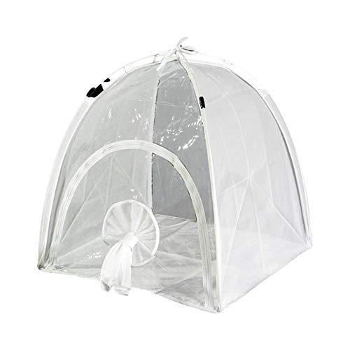 Tragbares Gewächshaus Zelt Mini Gewächshaus Pflanze Grow House PVC Portable Zelt Insektenkäfig Isolierung Schuppen Insektenschutz Blumenzelt Shelter für Garten Outdoor Hinterhof