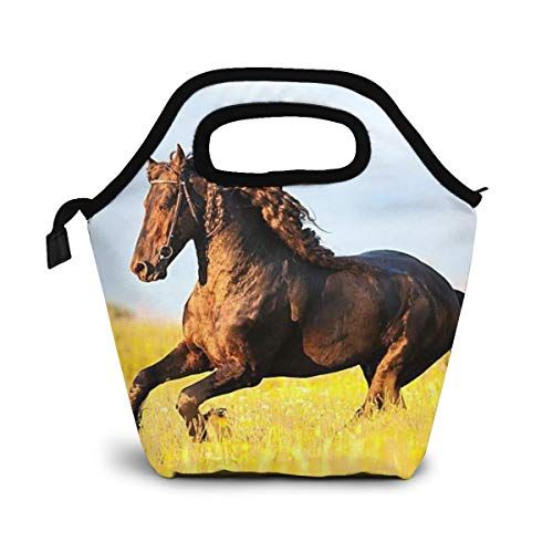 Friesian Horse with Mane Gallops Insulated Lunch Bag for Women Men, Leakproof Thermal Reusable Lunch Box for Adult & Kids, Lunch Cooler Tote for Office Work
