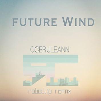 Future Wind