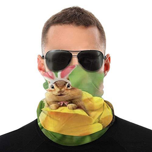 Bandeau, Chipmunk Bunny in Tulip Elastic Seamless Bandana Scarf, UV Resistence Sport Headwear Series for Yoga Randonnée Équitation Motocyclisme