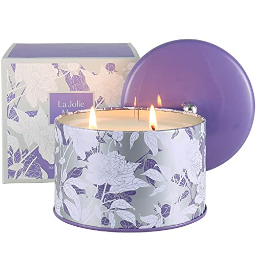 LA JOLIE MUSE Lavender Candle Scented - 2 Wicks Large Scented Candles Gifts for Women, Luxury Lavender Aromatherapy Candle for Home Spa Stress Relief Birthday Mother's Day, Long Burning Time Candle