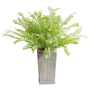 Amon Artificial Mimosa Leaves Plant, Green Plant Dry Branch Flower Arrangement Indoor Outdoor Artificial Tree, 17.7 Inches Tall