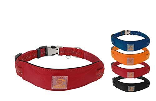 MICHUR Bruno HUNDEHALSBAND rot, Nylon Hundehalsband, Halsband für Hunde, Neon Rot, Neopren Polsterung, reflektierende Linien, verstellbar, in 3 Größen und die passende Leine erhältlich
