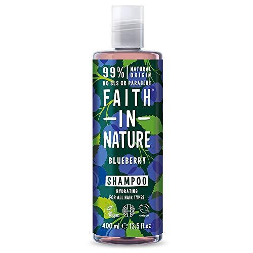 Faith in Nature Champú Natural de Arándanos, Hidratante, Vegano y No Testado en Animales, sin Parabenos ni SLS, para Todo Tipo de Cabello, 400 ml