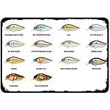 OSONA Cartel de metal vintage tipo de pescado para el hogar, bar, bar, cocina, garaje, restaurante, pared, letreros de 30,5 x 20,3 cm
