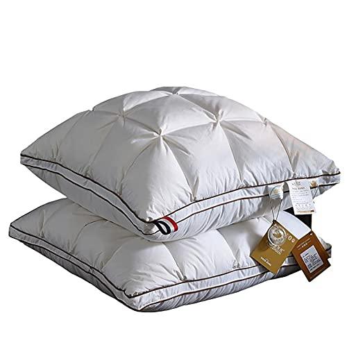 FFAN Almohadas Decorativas, Almohadas para arrojar Multiusos de Gran Elasticidad y Comodidad para el hogar, Cojines de algodón de PP para Cama y sofá estándar, 2 Piezas, 80 * 80 CM Nice Family