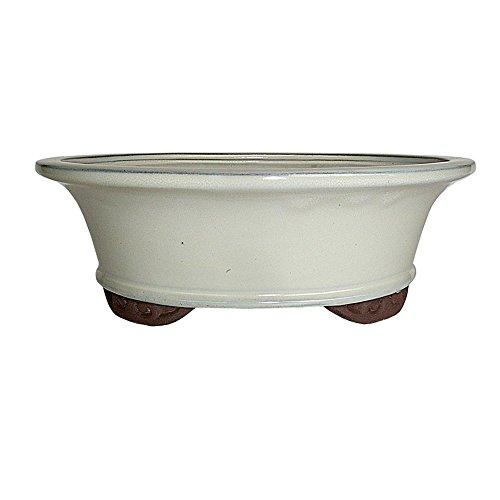 Brussel's 10' Oval Bonsai Glazed Ceramic Pot (Large, New Cream)