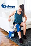 Beluga Arctic Flow Therapy System (with Knee Bladder) | Cold Therapy Ice Machine for After Knee Surgery or Injury | Air Pressure Pump with Adjustable Timer