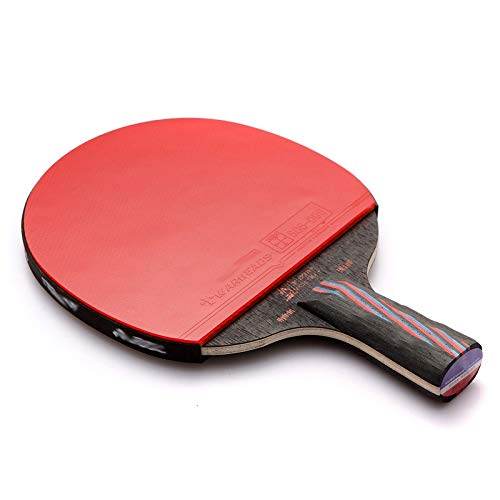 Read About Hewen-Ping Pong Set Pingpong Paddle Table Tennis Racket Ping Pong Bat Set with 1 Rackets,...