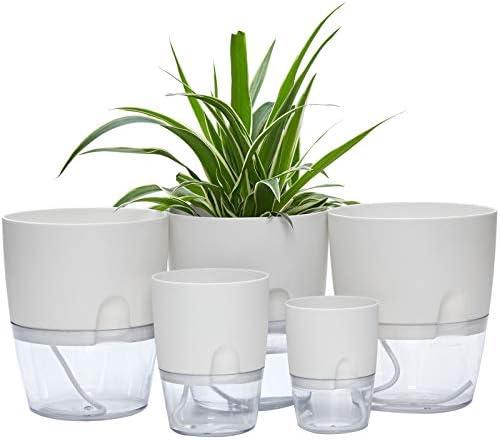 Self Watering Pots for Indoor Plants ETGLCOZY 5 Pack 6 4 1 3 2 Inch Flower Pot Modern Decorative product image