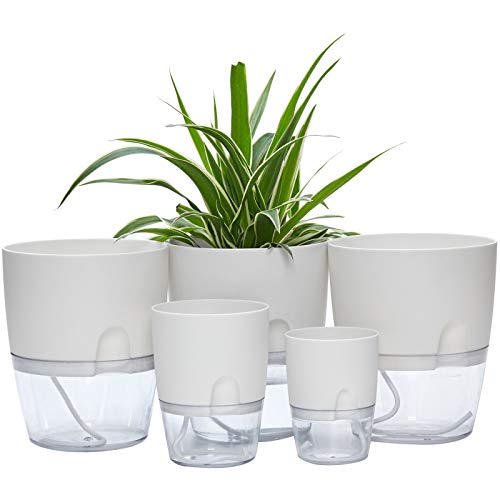 Self Watering Pots for Indoor Plants, ETGLCOZY 5 Pack 6/4.1/3.2 Inch Flower Pot Modern...