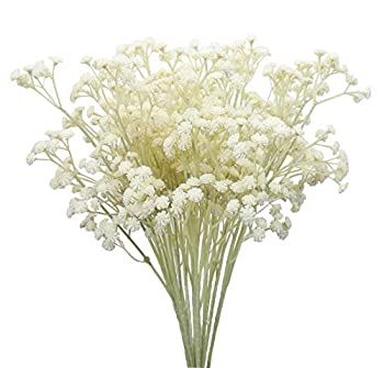 Duovlo 10pcs Babies Breath Flowers 23.6  Artificial Gypsophila Bouquets Real Touch Flowers for Wedding Home DIY Decor