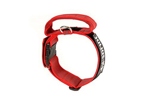 Julius-K9 Collar Color & Gray con la manija, la cerradura de seguridad y el remiendo intercambiables, 50 mm 49/70 cm, Rojo/Gris