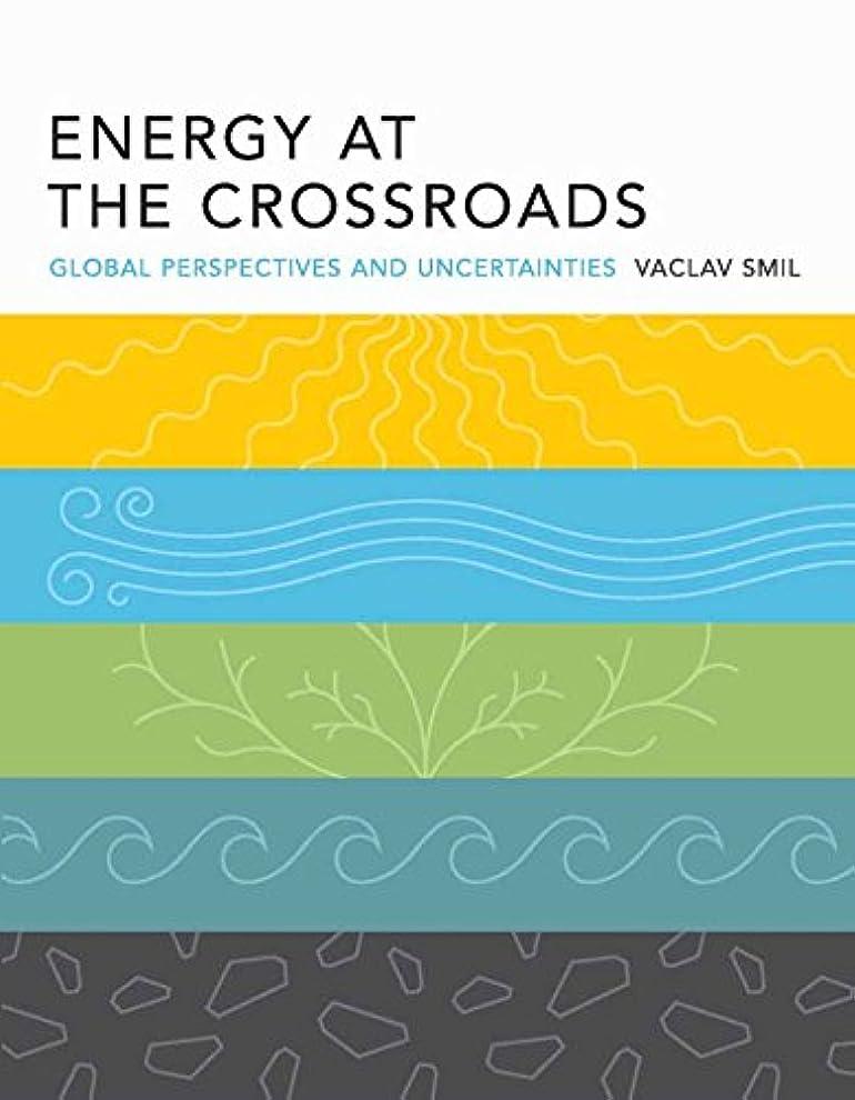 転用作り上げる限定Energy at the Crossroads: Global Perspectives and Uncertainties (The MIT Press) (English Edition)