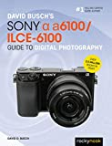 David Busch's Sony Alpha a6100/ILCE-6100 Guide to Digital Photography (The David Busch Camera Guide Series)