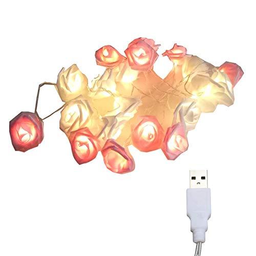 Linterna LED blanca y rosa de 2 metros, 10 luces, modelos USB siempre en rosa, cadena de simulación de flores, decoración de la cadena, lámpara colgante del día de San Valentín