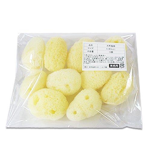 【業務用】天然海綿シルク サイズ5(約5cm)1袋10個入り│プロ仕様 吸収力・耐久力抜群 サニタリー