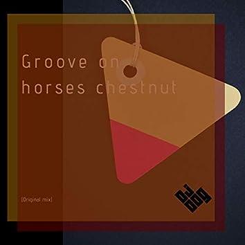 Groove on Horses Chestnut