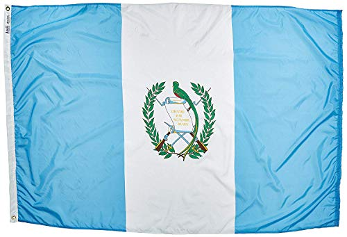 Annin Flagmakers 193162 International Flag, 3x5, not_applicable