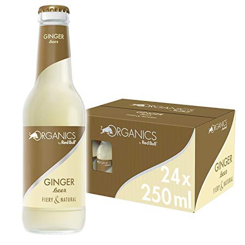 Red Bull Organics by Ginger Beer 24 x 250 ml Glasflaschen Bio Getränke