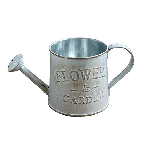 Rustic Watering Can, Decorative Flower Holder Galvanized Finish Metal, Garden Flower Letters Engraved Garden Bonsai Watering Pot Small Size, Plant Flower Iron Planter (A)