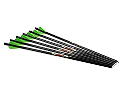 Excalibur Diablo Carbon Arrows