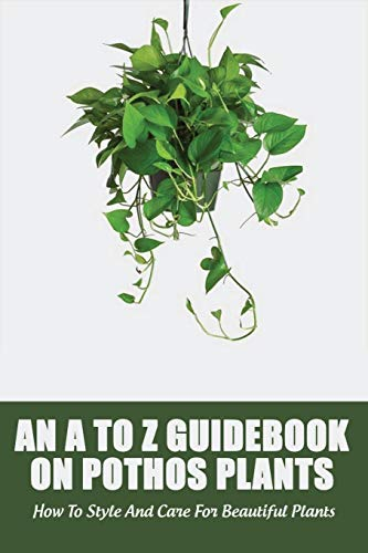 An A To Z Guidebook On Pothos Plants: How To Style And Care For Beautiful Plants: Philodendron Plant Live