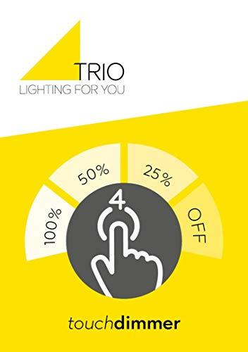 Trio Lighting 599600119
