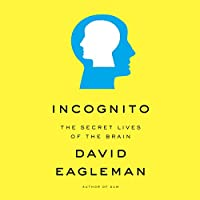 Incognito audio book