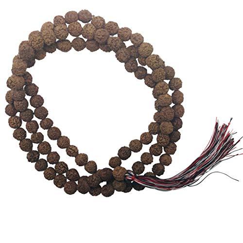Samen graine Nepal mantra semilla seme buddhist mala Rudraksha