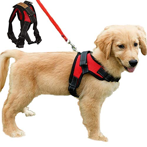 Dog Harness No Pull Adjustable Puppy Vest Harness Small Dog Mesh Breathable Soft Padded Pet Chest Strap (XS, Red)