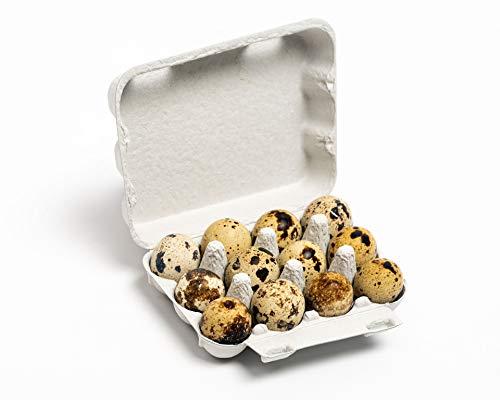 Pulp Quail Egg Carton 12 Cavity One Dozen Paper Tray (100)