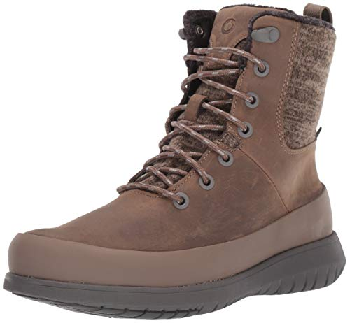 BOGS Women's Freedom Lace Waterproof Insulated Winter Snow Boot, Taupe, 7.5 M US