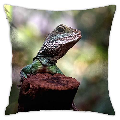 asdew987 - Federa decorativa per cuscino, motivo: lucertola, anfibi, rettile, decorazione per la casa, 45 x 40 cm