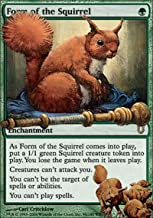 Best form of the squirrel Reviews
