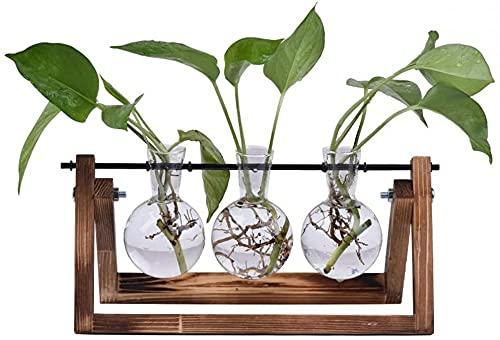 zhyx - Maceta de vidrio de escritorio con soporte de madera maciza retro y soporte giratorio de metal para plantas hidropónicas, hogar, jardín, decoración de boda, interior y exterior. (3)