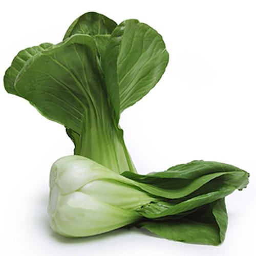 1100 Baby Bok Choy Seeds - Delicious Chinese Vegetable