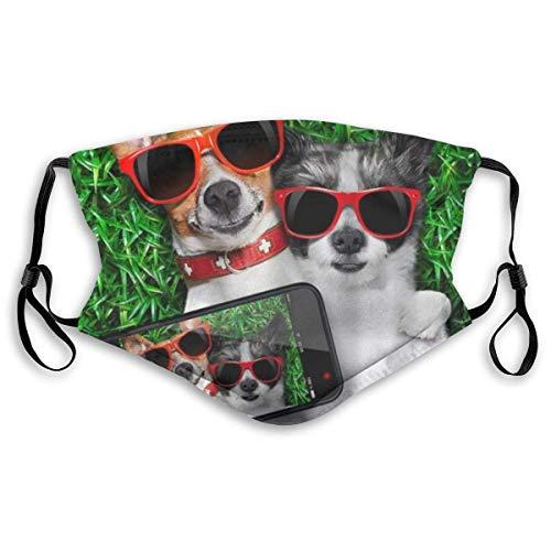 Cubierta facial divertida con dos perros con gafas de sol rojas, para tomar fotos, autorretrato en verde prado, césped dulce y fresco, pasamontañas, reutilizable, antipolvo, con 2 filtros