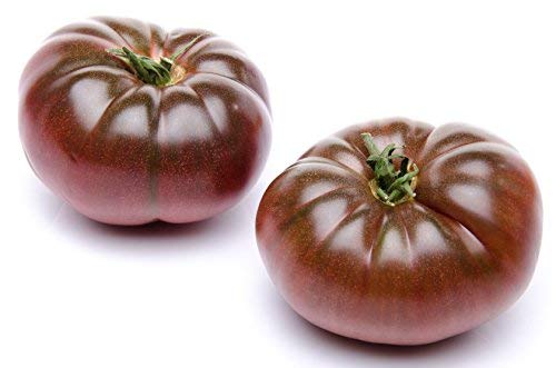 100 Cherokee Purple Heirloom Tomato Seeds by RDR...