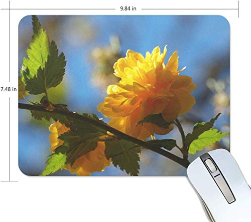 Muis Pad Bloem Tak Plant Schaduw Aangepaste Rechthoek Niet Slip Rubber Mousepad Gaming Muis Pad Mat