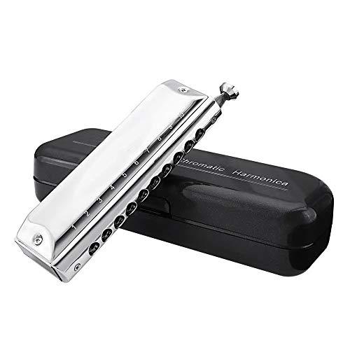 NBNBN Mundharmonika Musikinstrument Metall 10 Löcher 40 Tones Erweiterte Chromatische Mundharmonika Am besten für Anfänger (Farbe : Silver, Size : One Size)