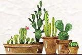 Puzzle 500 Piezas Adultos Cactus-A5 Adecuado para Adultos y Mayores de 12 años. 52x38CM