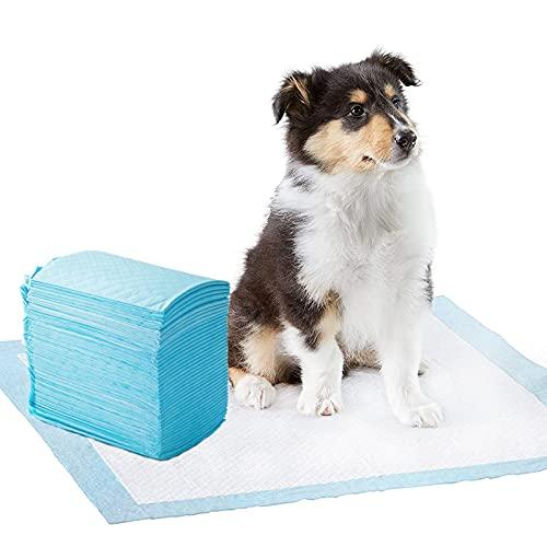 ZONSUSE Tappetini igienici per Cani,Tappetini Igienici Monouso per Gabbia,Letto, Addestrare Cucciolo,Addestramento pipì,Traversine per Animali Domestici