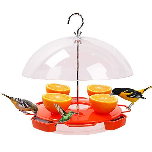 Solution4Patio Baltimore Oriole Feeder Hummingbird Combination, 3 Types Food, Orange, Grape Jelly, Nectar, 34-Ounce Nectar Capacity, Weather Guard Squirrel Baffle #G-B122A00
