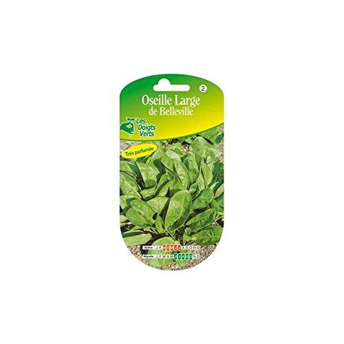 Les doigts verts Semence Oseille Large de Belleville