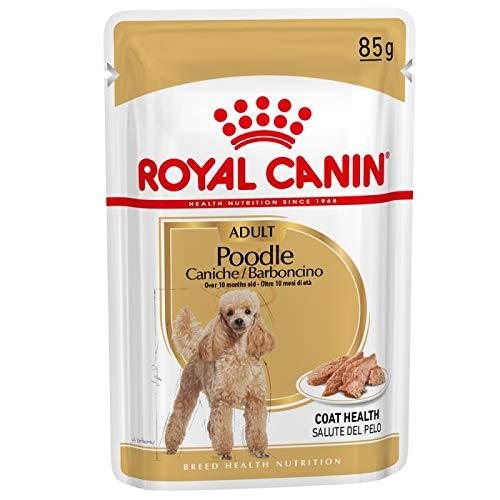 ROYAL CANIN Poodle Pudel Adult Nassfutter für Hunde 12x85g